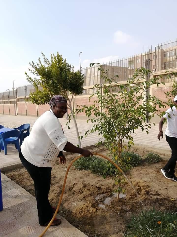متطوعو الاتحاد الافريقى يزرعون 100 شجرة بمنتدى 15 مايو (20)