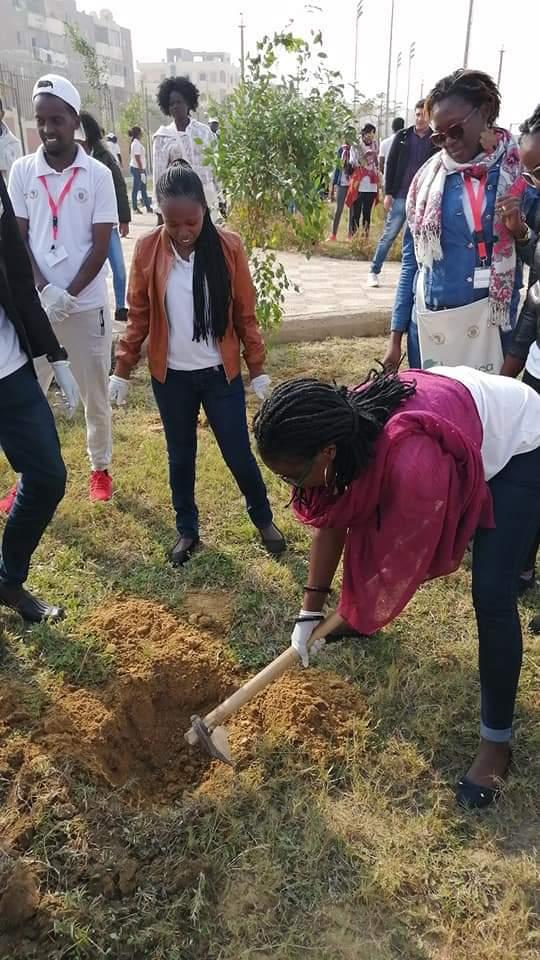 متطوعو الاتحاد الافريقى يزرعون 100 شجرة بمنتدى 15 مايو (13)