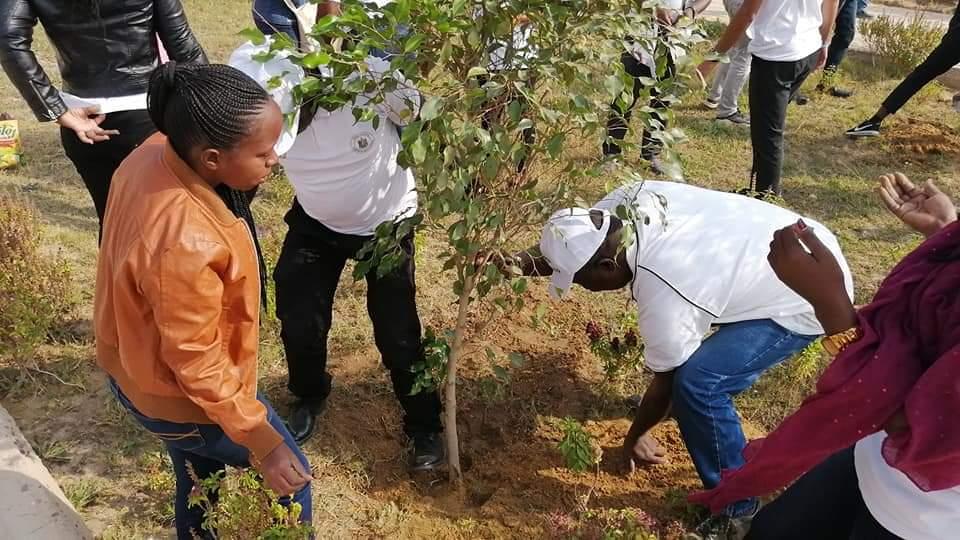 متطوعو الاتحاد الافريقى يزرعون 100 شجرة بمنتدى 15 مايو (15)