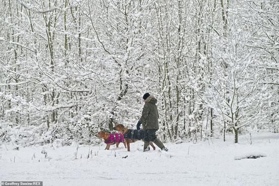 الثلوج كست بريطانيا فو اسوأ موجة طقس منذ 7 سنوات  (13)