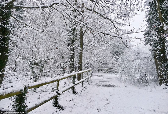 الثلوج كست بريطانيا فو اسوأ موجة طقس منذ 7 سنوات  (12)