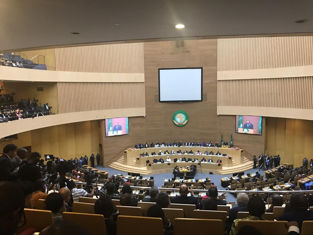 الاتحاد الأفريقي (11)