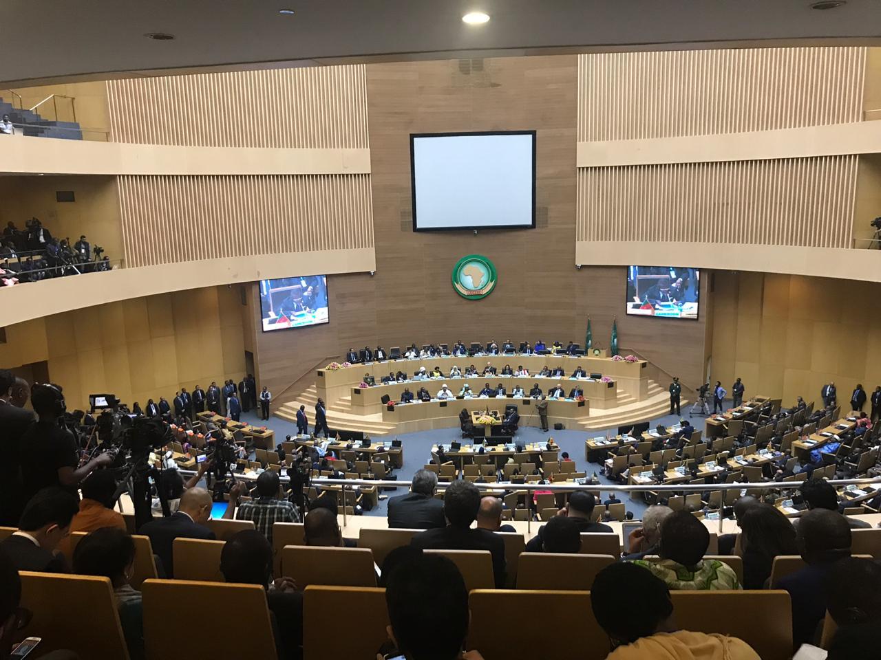 الاتحاد الأفريقي (10)