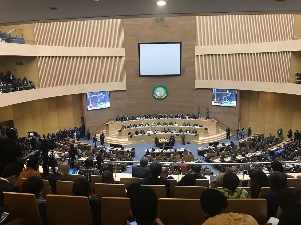 الاتحاد الأفريقي (6)