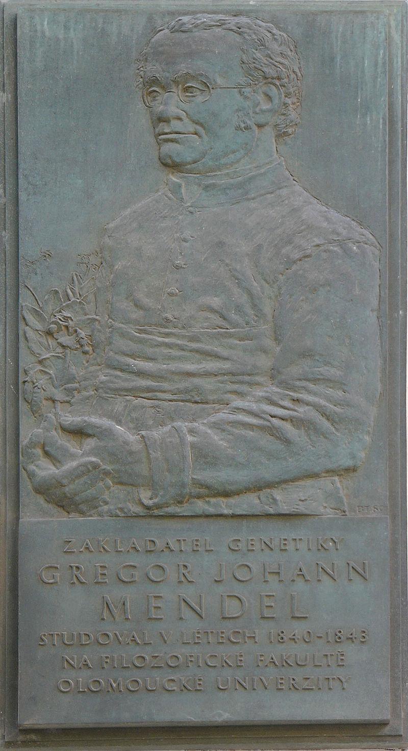 لوحة تذكارية لمندل بمدينة أولموك بتشيكيا