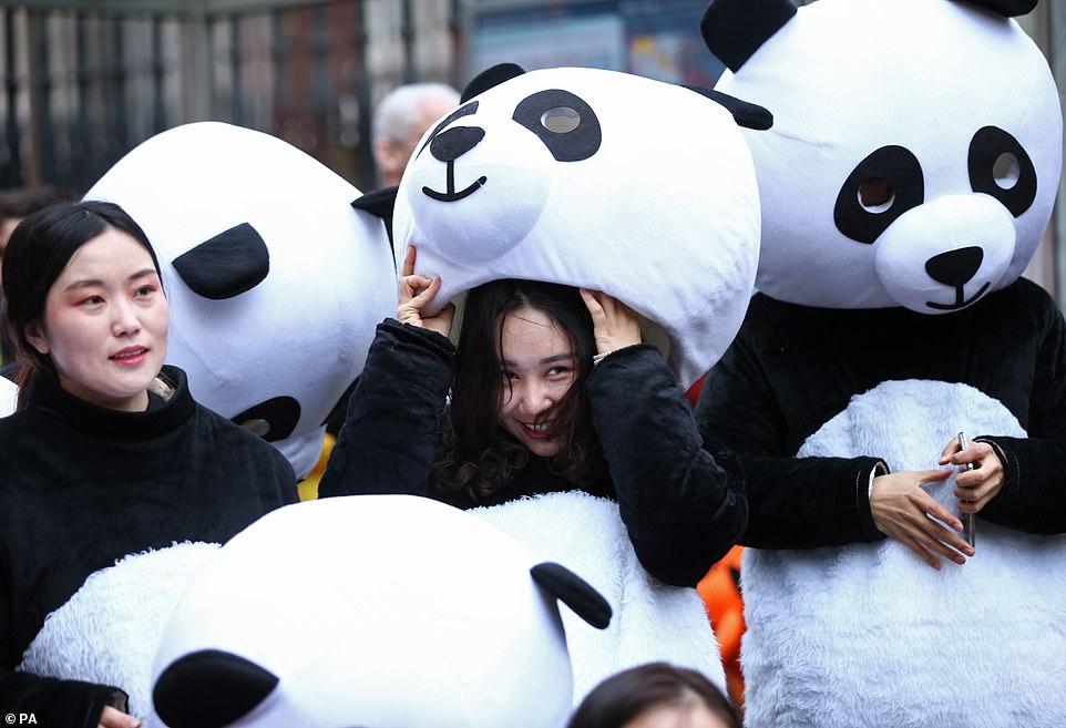 احتفال السنة الصينية الجديدة (13)