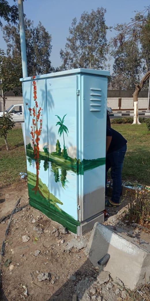 تحويل أكشاء الكهرباء الى لوحات فنية (8)