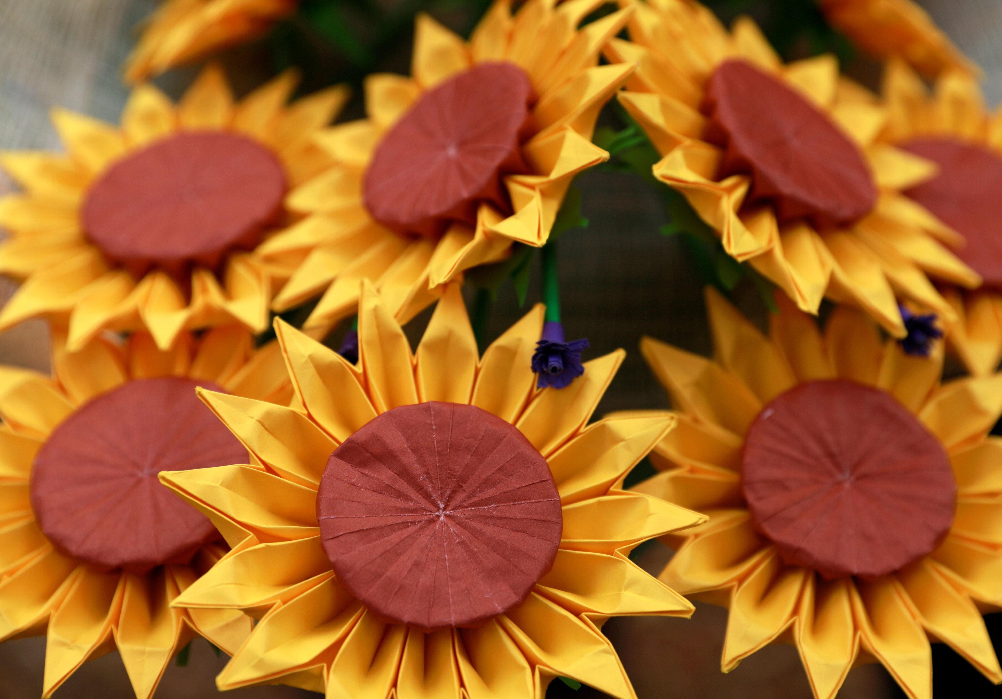 فلبينيون يعبرون عن حبهم الأبدى بباقات زهور ورقية (2)