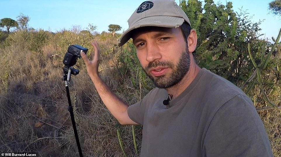 المصور البريطانى يجهز المعدات لتصوير النمر الاسود
