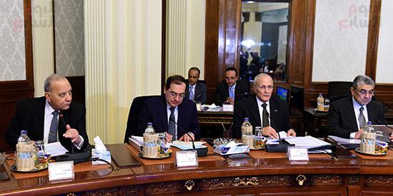 اجتماع الحكومة (4)