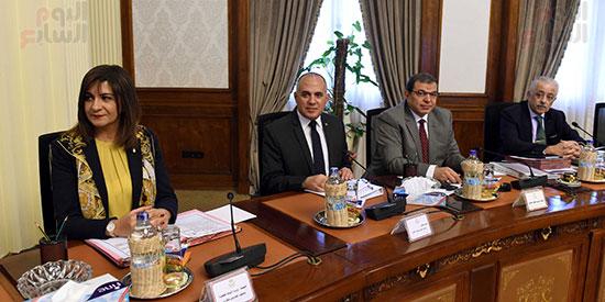 اجتماع الحكومة (16)