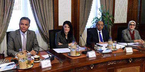 اجتماع الحكومة (17)