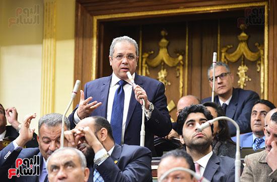 الجلسه العامة (10)