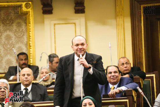 الجلسة العامة (17)