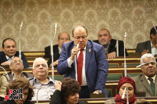 الجلسة العامة (16)