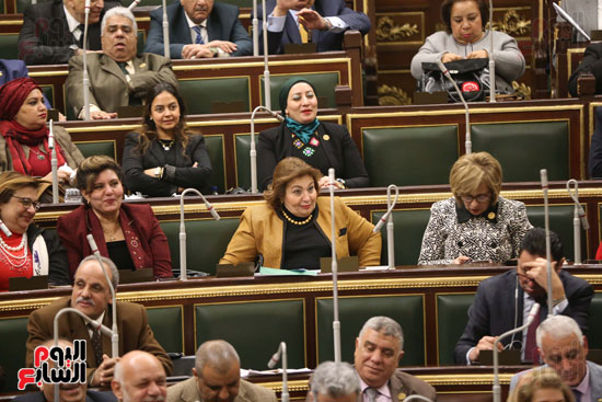 الجلسة العامة (28)