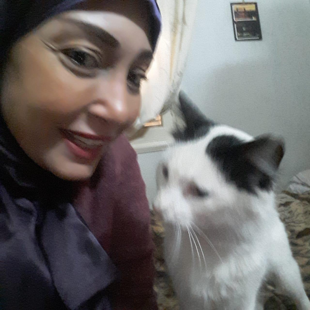 امل والقطة