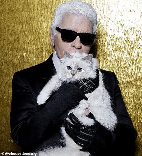 كارل مع قطته