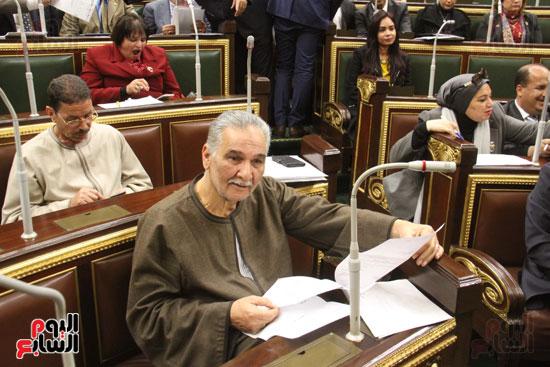 الجلسه العامة لمجلس النواب (9)