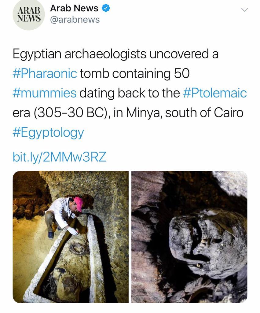 الصحف العالمية تتحدث عن اكتشافات تونة الجبل (4)