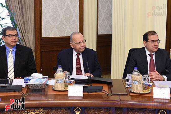 اجتماع مجلس الوزراء الأسبوعى (18)