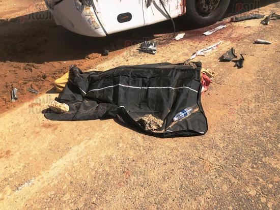 حادث تصادم شرم الشيخ (4)