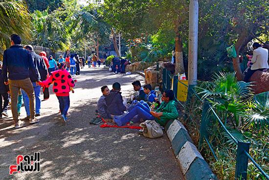 الأسر تودع الإجازة وتستعد للدراسة.. إقبال كثيف على حديقة الحيوان (2)