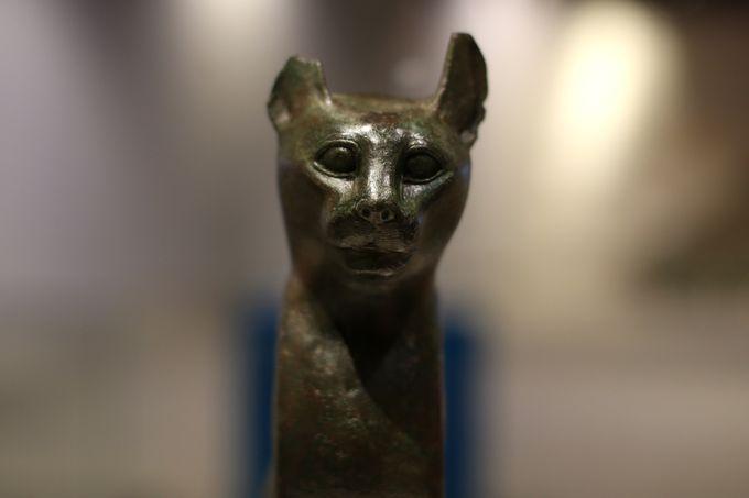 تمثال القطة البرونزى