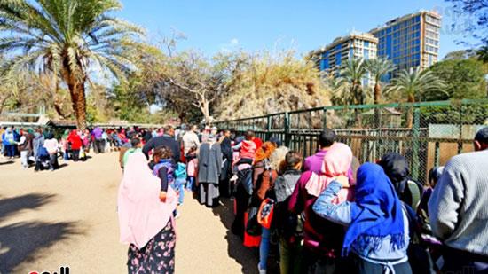 الأسر تودع الإجازة وتستعد للدراسة.. إقبال كثيف على حديقة الحيوان (5)