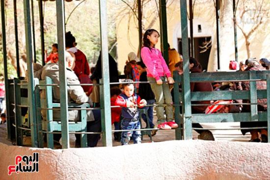 الأسر تودع الإجازة وتستعد للدراسة.. إقبال كثيف على حديقة الحيوان (21)