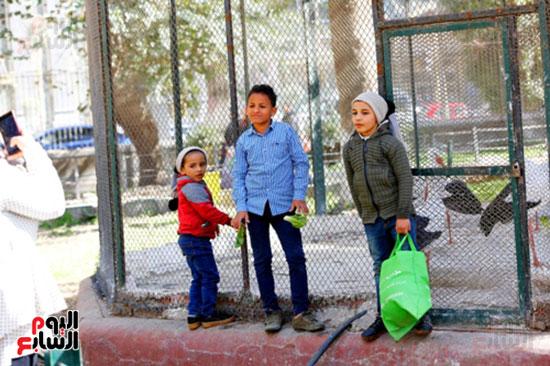 الأسر تودع الإجازة وتستعد للدراسة.. إقبال كثيف على حديقة الحيوان (32)