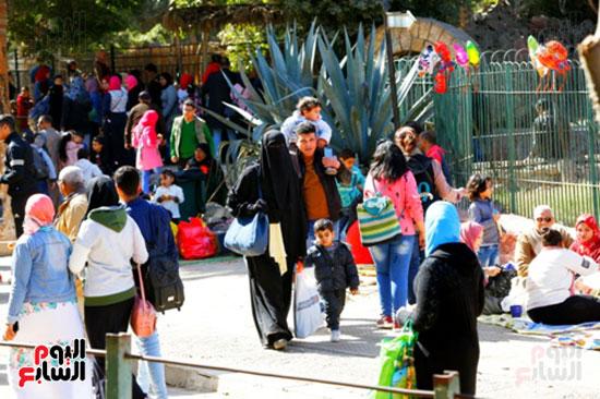 الأسر تودع الإجازة وتستعد للدراسة.. إقبال كثيف على حديقة الحيوان (12)