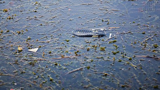 وزيرة البيئة تطلق حملة لتنظيف نهر النيل من المخلفات خاصة البلاستيكية (5)