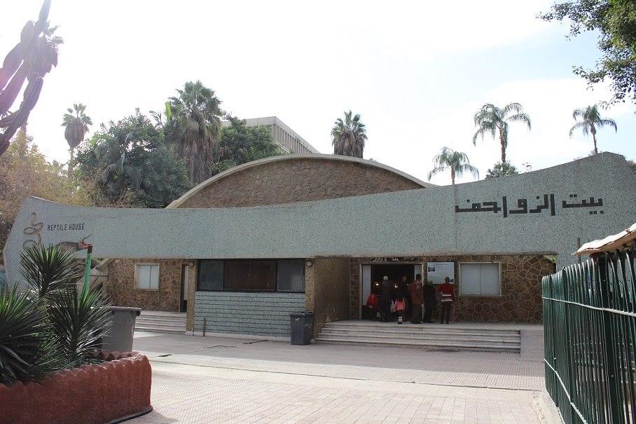 بيت الزواحف