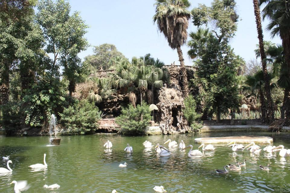 بحيرة جبلاية القلعة