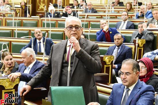 الجلسة العامة لمجلس النواب (10)