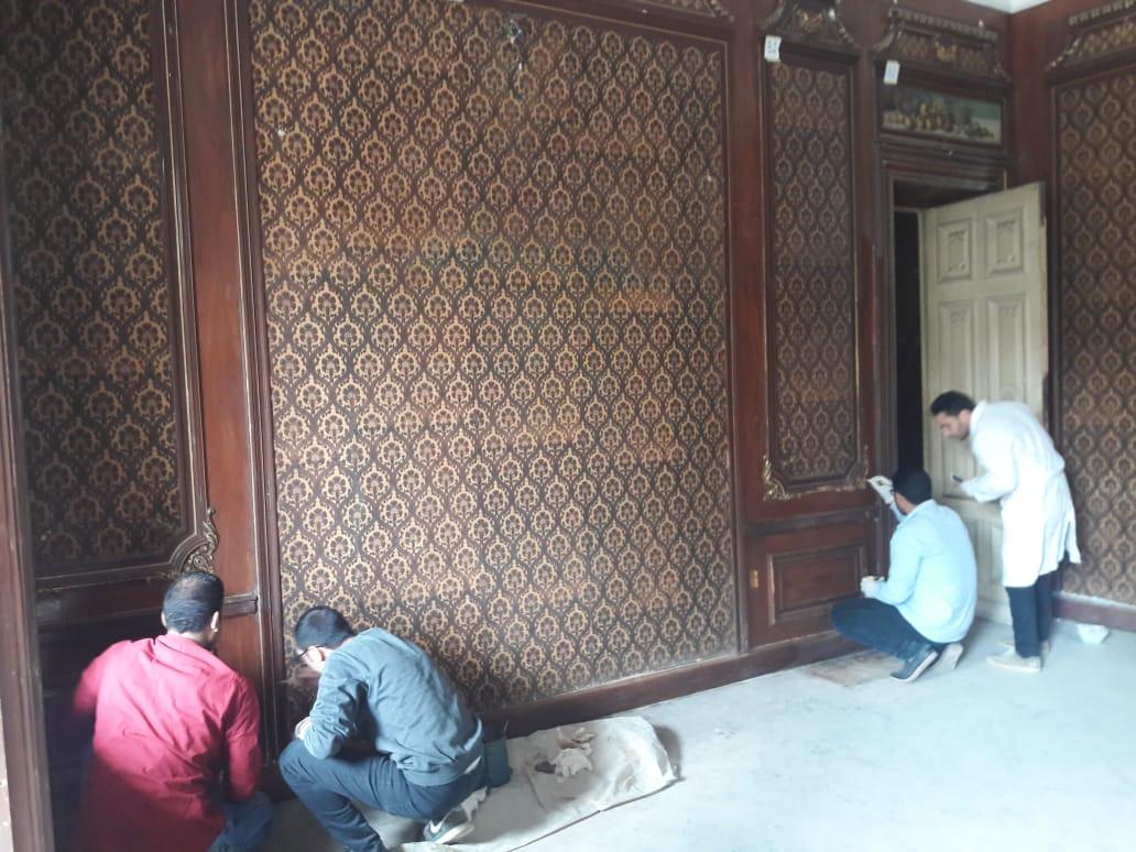 قصر  الشناوى (2)