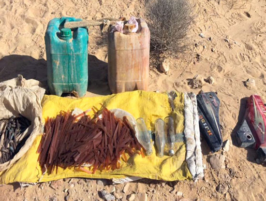 العملية الشاملة سيناء  (11)