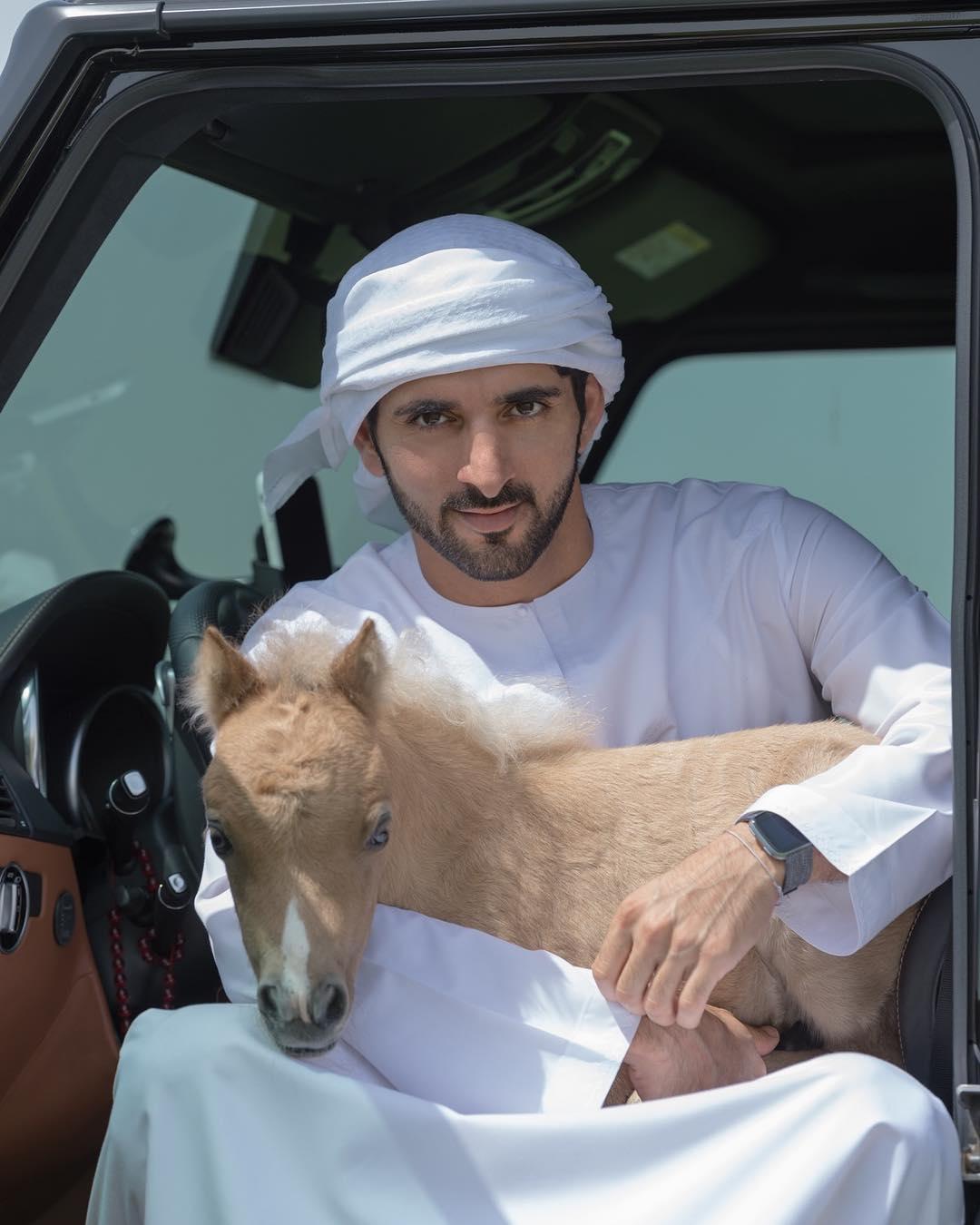 حمدان بن محمد بن راشد مع مهر صغير