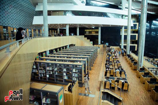 مكتبة الإسكندرية (25)