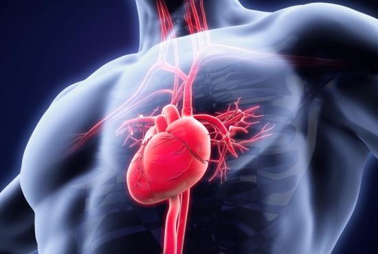اسباب ضربات القلب السريعة 2