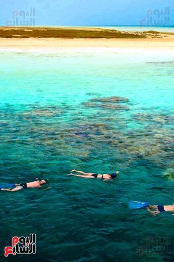 جزيرة سيال بمرسى علم (10)