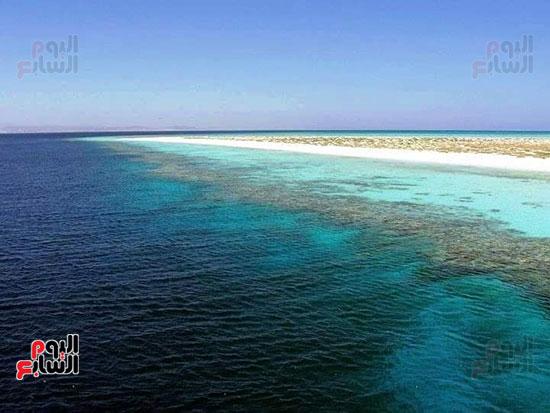 جزيرة سيال بمرسى علم (3)