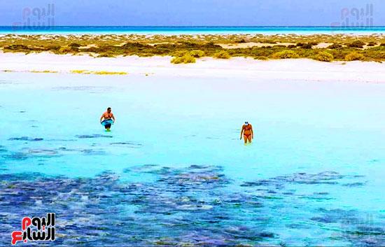 جزيرة سيال بمرسى علم (11)