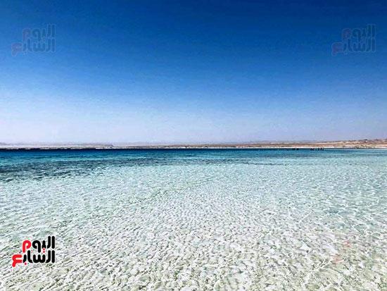 جزيرة سيال بمرسى علم (2)