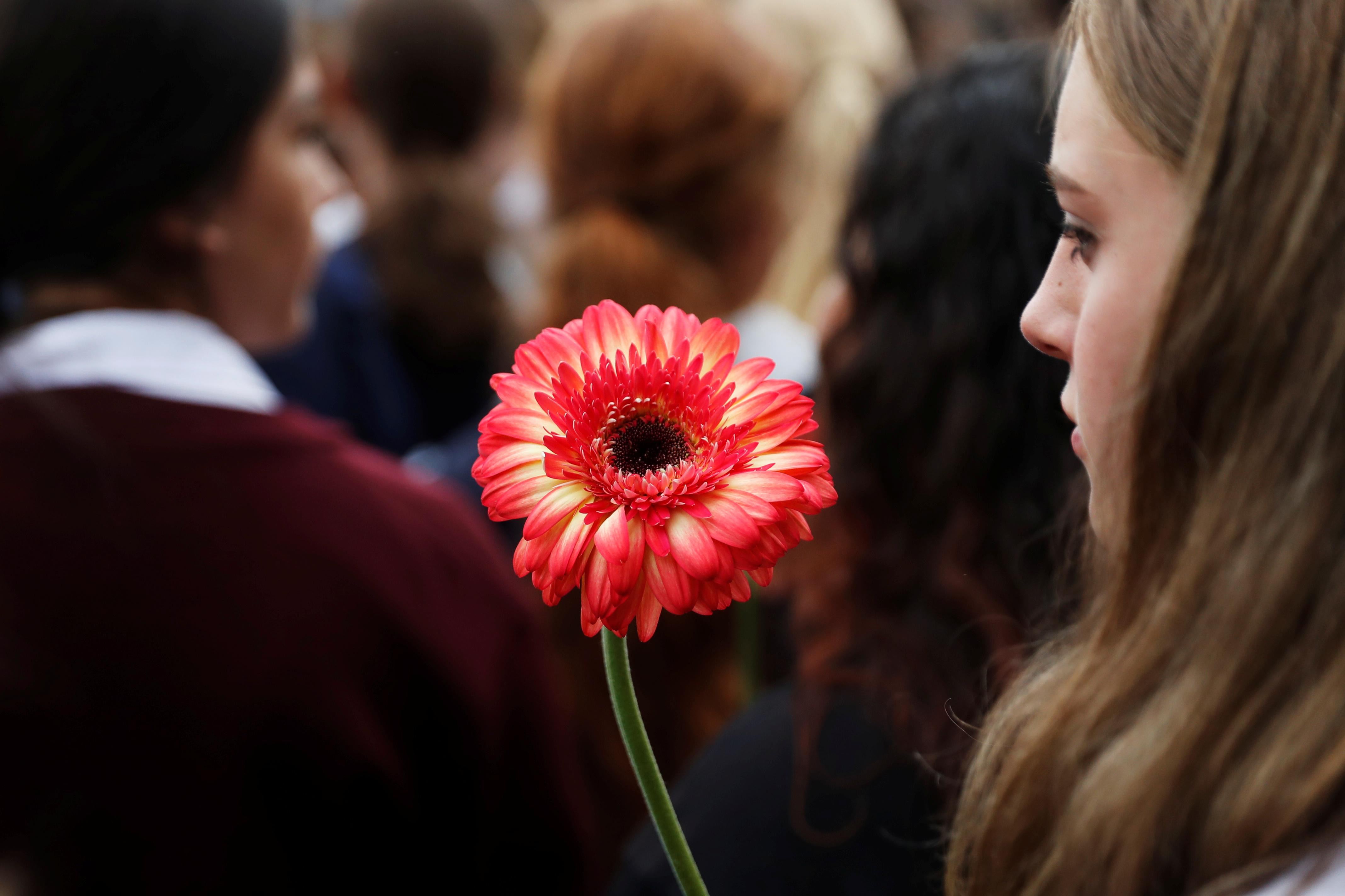 فتاة تحمل وردة لتكريم أرواح الشهداء