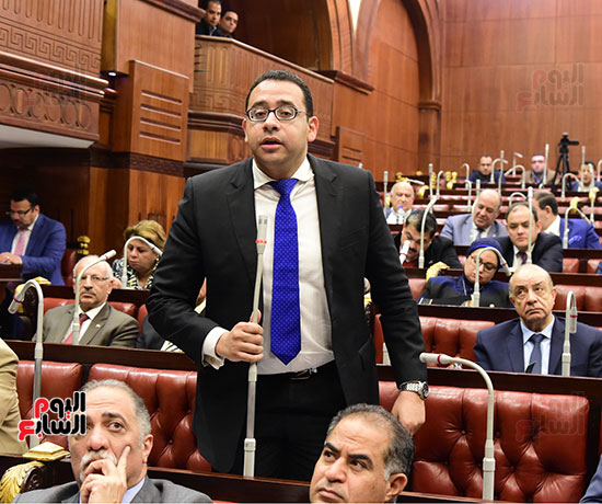 لجنة الشئون الدستورية والتشريعية (19)