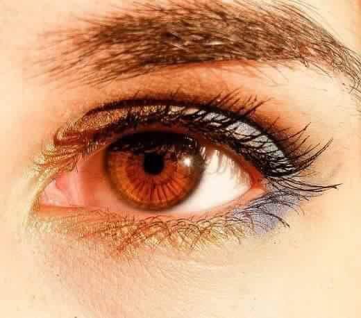 6 صفات لأصحاب العيون البنية (4)