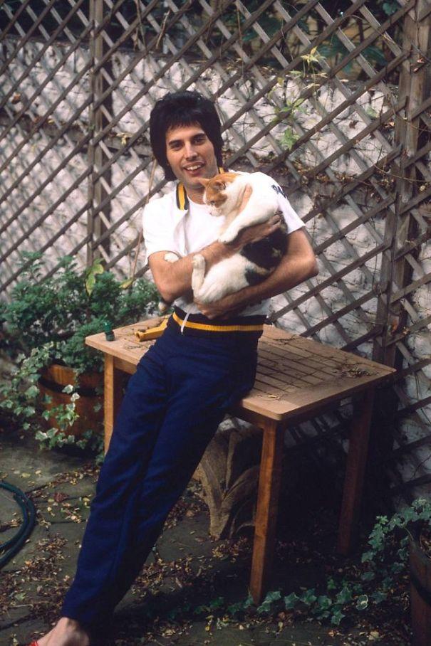 فريدى ميركورى مع قططه  (14)