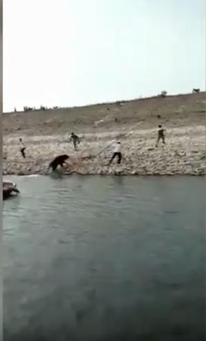 لحظة هروب الدب الأسود وهجومه على الفريق